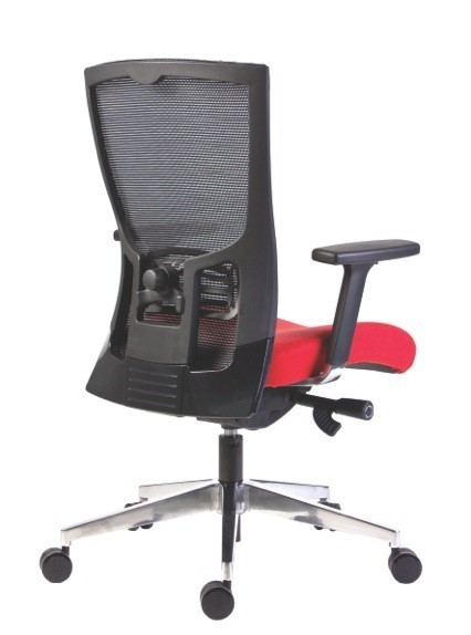 Seating and Lumbar Support